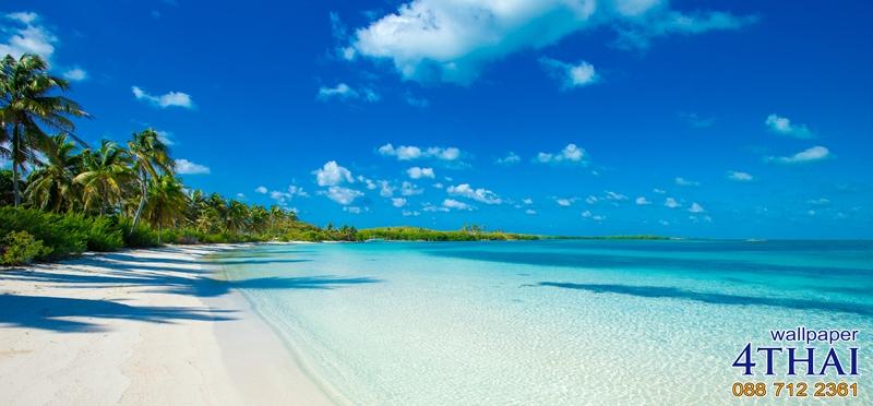 ชายหาดน้ำใส