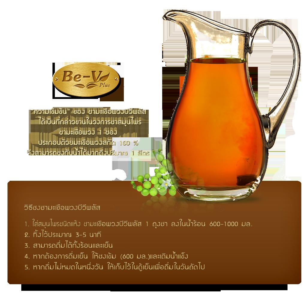 วิธีชงชามะเขือพวงบีวีพลัส