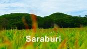 โรงแรม รีสอร์ท สระบุรี : Saraburi Hotel & Resort